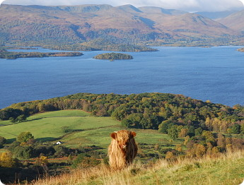 Loch Lomond  amp The T...