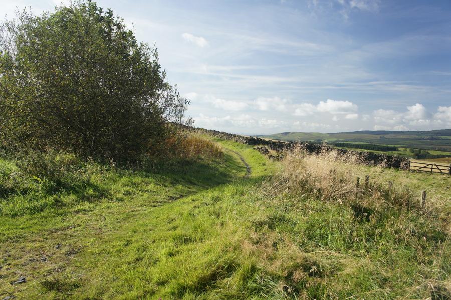cross border trail  newcastleton  walkhighlands