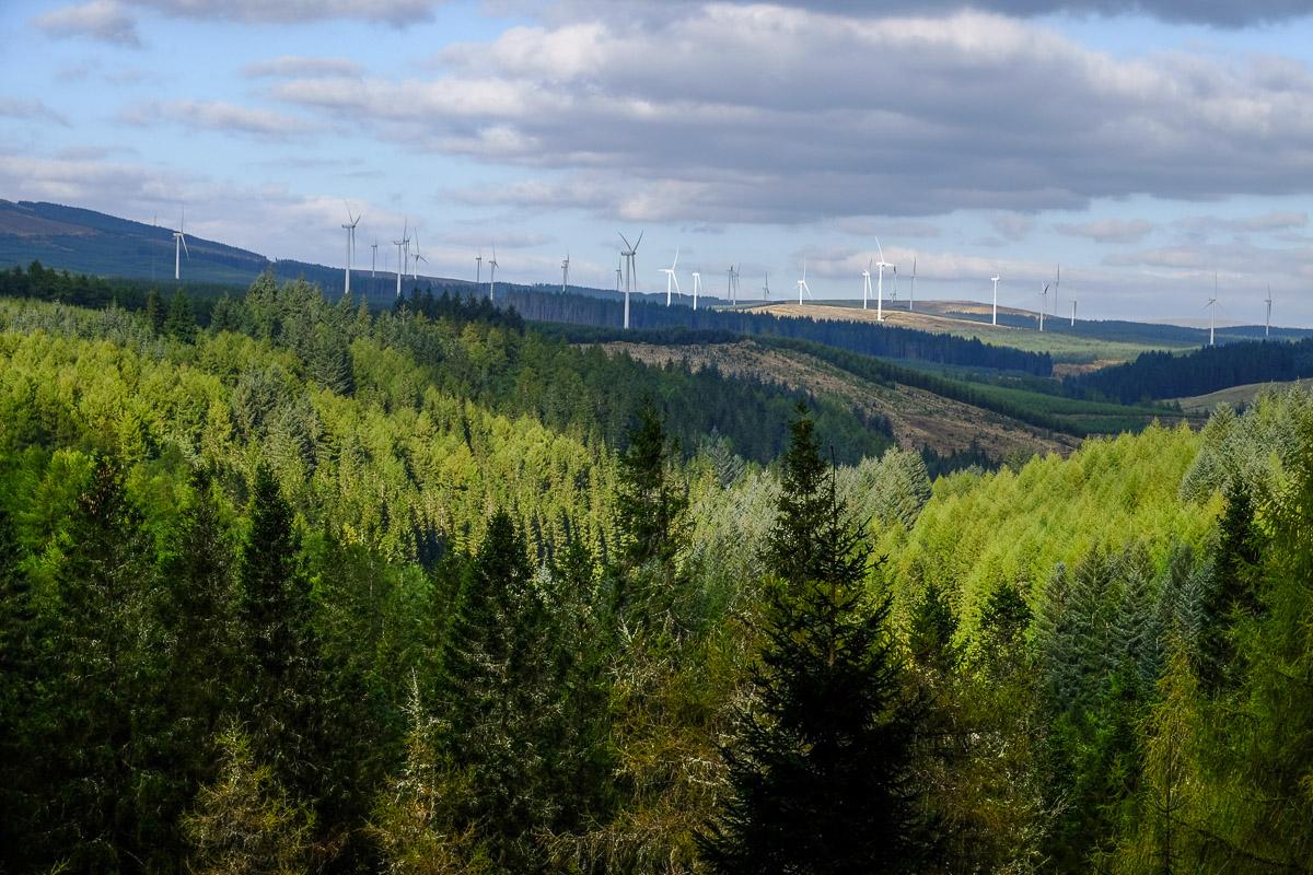 Forest Of Ae Walks Walkhighlands