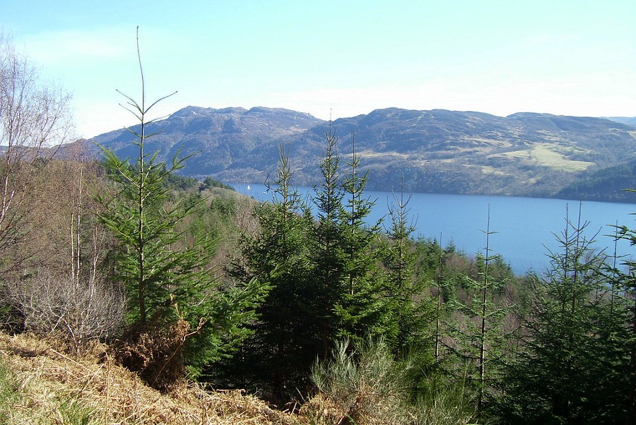 Loch Ness Lodge | Official Site | Best Rate Direct