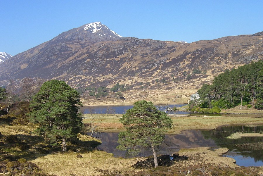 Kintail Bed And Breakfast