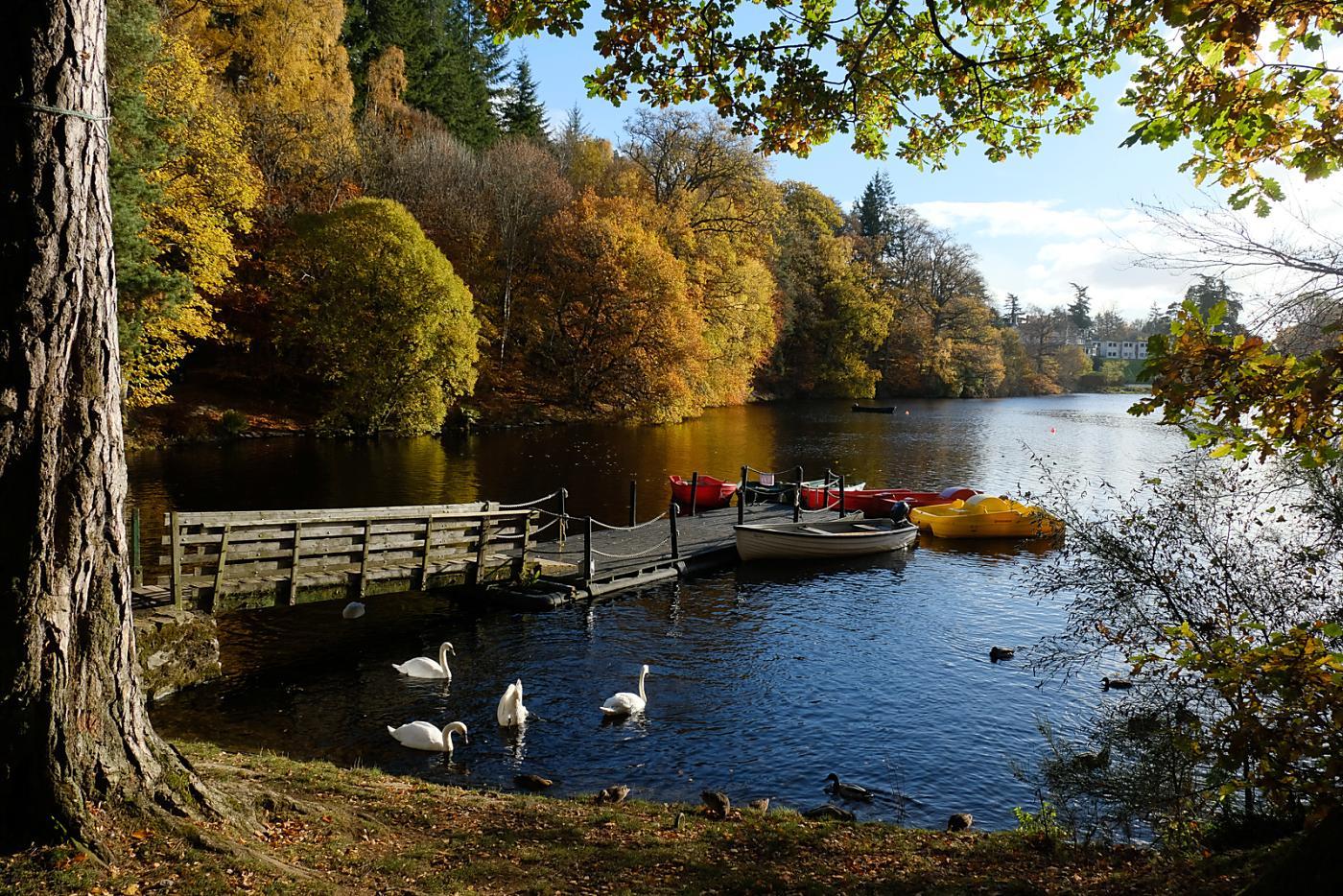 Buy Car Perth >> Loch Faskally and Pitlochry Fish Ladder (Walkhighlands)